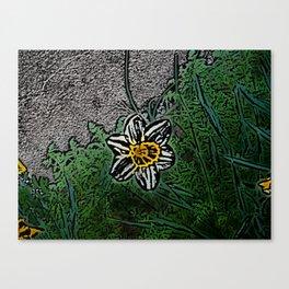 Surreal White Daisy  Canvas Print