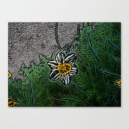 Surreal White Daisy  Canvas Print