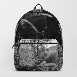 Down on the Farm Backpack
