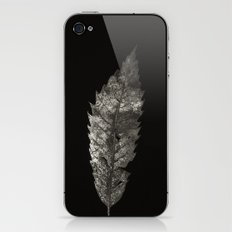 Project 'Decay'. Sweet Chestnut leaf (Castanea sativa) iPhone & iPod Skin