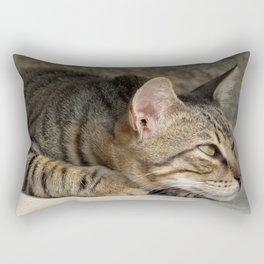Thoughtful Tabby Cat Rectangular Pillow