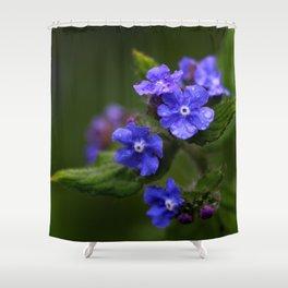 Omphalodes verna - JUSTART © Shower Curtain