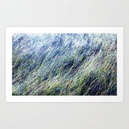 Tillinghast Place 11 Art Print