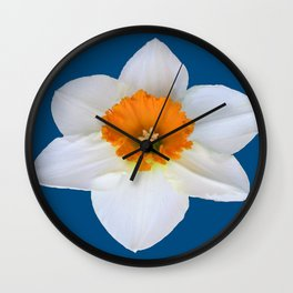 DECORATIVE ORANGE CENTERED WHITE DAFFODIL TEAL ART Wall Clock