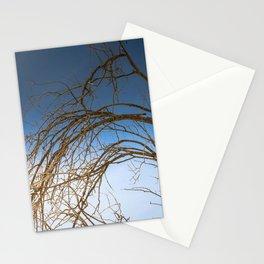 Tree Of Life 7331Joshua Tree Stationery Cards