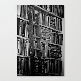 Book Shelves Canvas Print