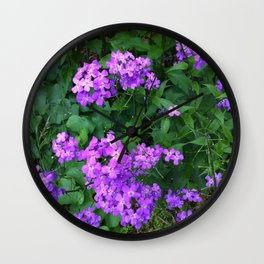 Wild Phlox Wall Clock