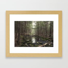 Mossy Brook Framed Art Print