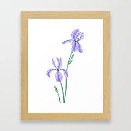elegant purple iris Framed Art Print