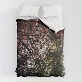 ξ Grumium Comforters