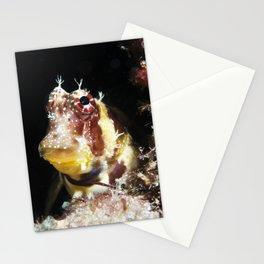 Triplespot Blenny Stationery Cards