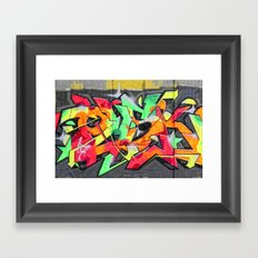 wall-art-006 Framed Art Print