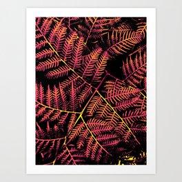 Peachy Pink & Yellow Bracken Art Print