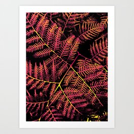 Peachy Pink & Yellow Bracken Art Print