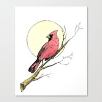 cardinal Canvas Prints featuring Cardinal by Eric Weiand