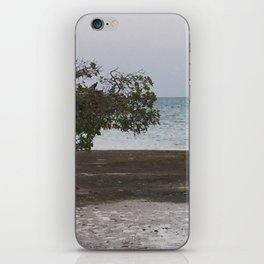 Waiting on Water iPhone Skin
