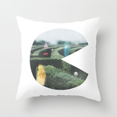 Sir, We Are Hunting Ghosts Throw Pillow