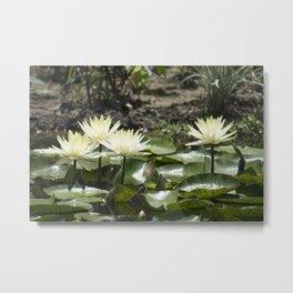 Longwood Gardens - Spring Series 275 Metal Print