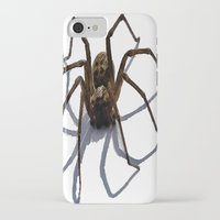 spider iPhone & iPod Cases featuring SPIDER by aztosaha
