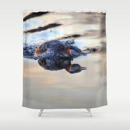 Grebe Torpedo - Red-necked Grebe Shower Curtain