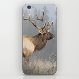Bull Elk One iPhone Skin