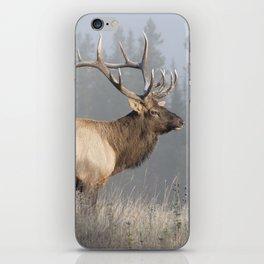 Bull Elk One iPhone Skin