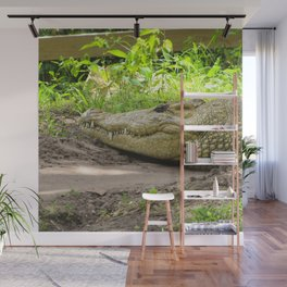 crocodile grin Wall Mural