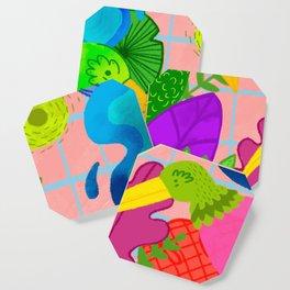 Pajarera Coaster