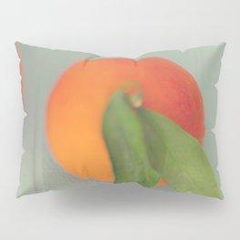 Orange Delight Pillow Sham