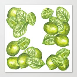 Watercolor Limes and Leaves Canvas Print