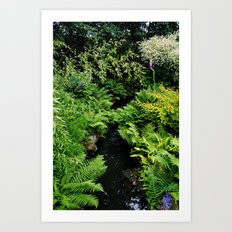 The Chinese Garden Art Print