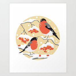Bullfinches on rowan branches 2 Art Print