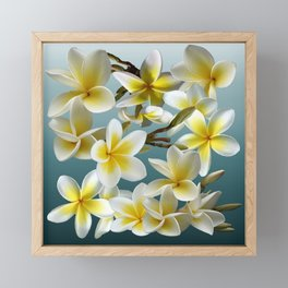 Plumeria on Blue Framed Mini Art Print