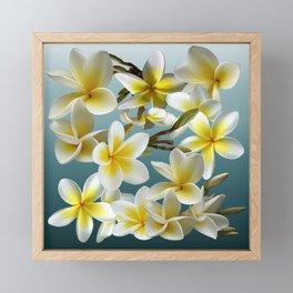 Plumeria on Blue Framed Mini Art Print