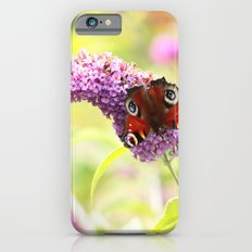 pastel peacock (butterfly) Slim Case iPhone 6s
