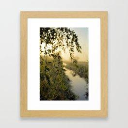 Natures Drapes Framed Art Print