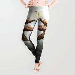 Starfish Leggings