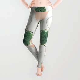 Lovely Succulents Leggings