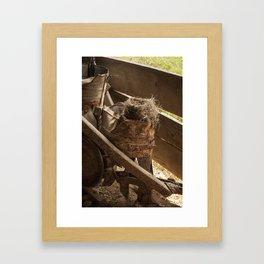 Bird Nest Framed Art Print