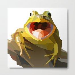 Hello Mr. Frog Metal Print