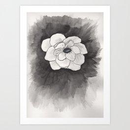 Inking Anemone Art Print