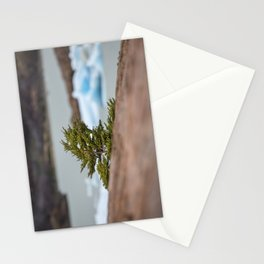 Patagonian Tree Stationery Cards