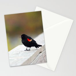 Red Winged Blackbird Stationery Cards
