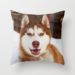 Hero in the snow Throw Pillow