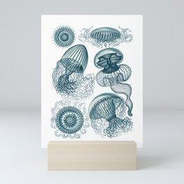Ernst Haeckel Jellyfish Leptomedusae Cerulean Mini Art Print