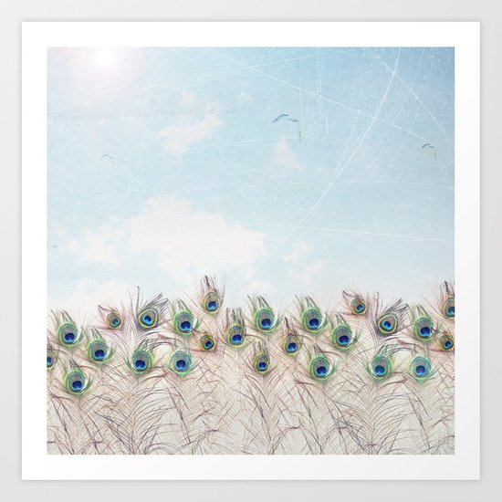 Fly Over A Peacock Field Art Print