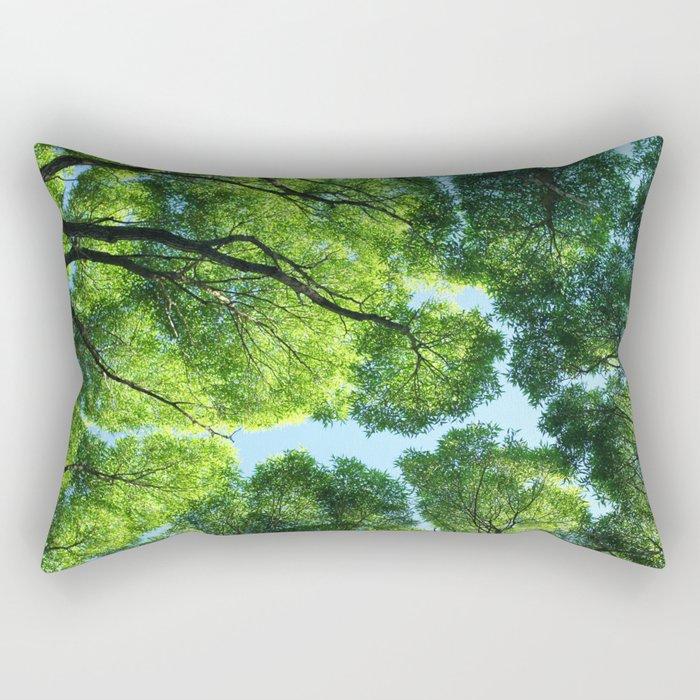 Crack willow Rectangular Pillow