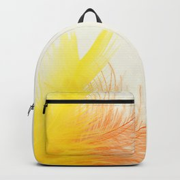 Bird Feathers Backpack