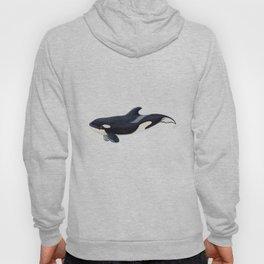 Baby orca Hoody