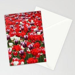Tulip Sensation Stationery Cards